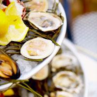 St. Augustine Seafood