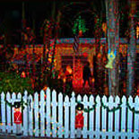 Enjoy Conch Tour Train's Annual Holiday Lights Tour