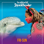 It's a tricky year for Halloween. Treat your family to fall fun at SeaWorld.