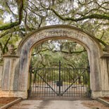 Wormsloe Plantation and Isle of Hope