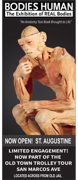 Bodies Human - An eye-opening and educational exhibition